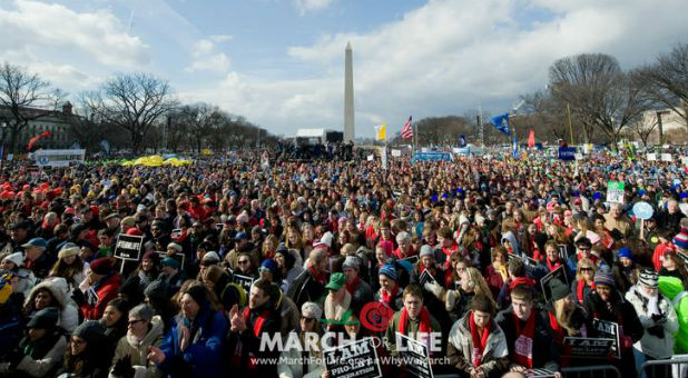 The crowd at the 2017 March for Life.