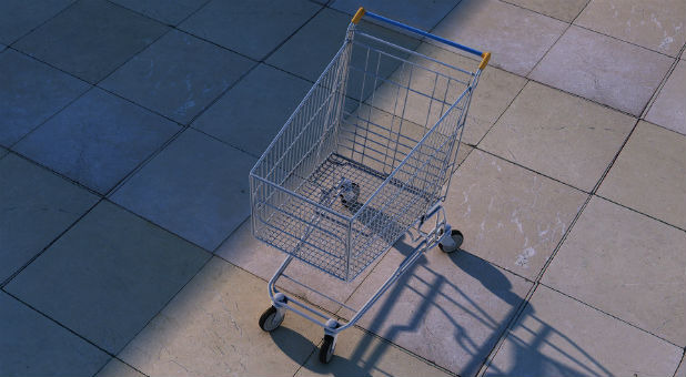 Abductors allegedly tried to kidnap a toddler from a shopping cart recently.