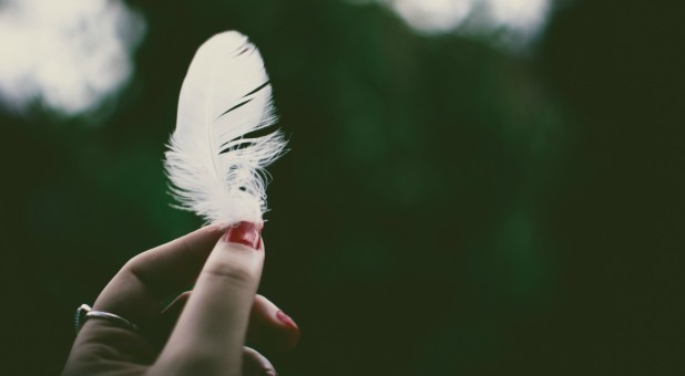 "When feathers suddenly appeared floating across the platform at a large charismatic conference, the evangelist announced that it was ""Holy Ghost feathers."" She was discredited, however, when a local pastor obtained a video of the meeting, slowed it down, and pointed out that she had released the feathers from the sleeve of her blouse."